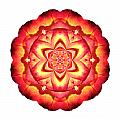 Yellow And Red Rose IIi Flower Mandala White by David J Bookbinder
