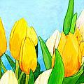 Yellow And White Tulips by Jim Harris