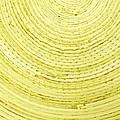 Yellow Arcs by Liz Leyden