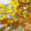 Yellow Autumn by Jutta Maria Pusl