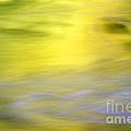 Yellow Autumn Reflections by Mark Sunderland