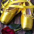 Yellow Ballet Shoes by Garry Gay