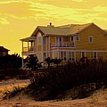 Yellow Beauty At Isle Of Palms by Kendall Kessler