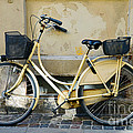 Yellow Bicycle In Copenhagen by Catherine Sherman