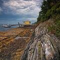 Yellow Boat House by Darylann Leonard Photography