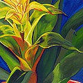 Yellow Bromeliad by Annette M Stevenson
