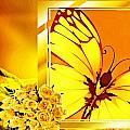 Yellow Butterfly by Tracie Howard