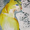 Yellow Cat by Jane Ferguson