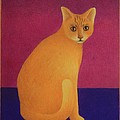 Yellow Cat by Pamela Clements