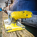 Yellow Cleat by Puget  Exposure