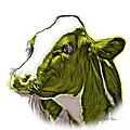 Yellow Cow Holstein - 0034 Fs by James Ahn