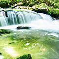 Yellow Creek Falls Great Smoky Mountains by Alex Grichenko