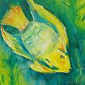 Yellow Fish by Tara Moorman