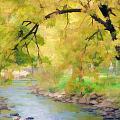 Yellow Flow by Tina Baxter
