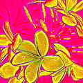 Yellow Flowers On Pink Background by Debbie Wassmann