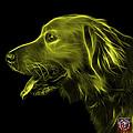 Yellow Golden Retriever - 4047 F by James Ahn