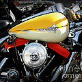 Yellow Harley by Lainie Wrightson