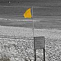 Yellow Hazard by Susan Leggett