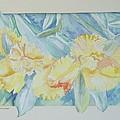 Yellow Iris' by Wanda Dansereau