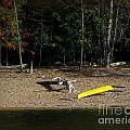 Yellow Kayak by Leone Lund