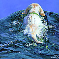 Yellow Lab  Blue Wake by Molly Poole