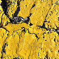 Yellow Line Abstract by Luke Moore