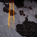 Yellow Line In The Grey 2  by Lyle Crump