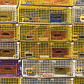Yellow Lobster Traps In Maine by Keith Webber Jr