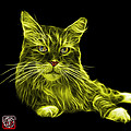 Yellow Maine Coon Cat - 3926 - Bb by James Ahn