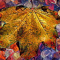 Yellow Maple 2013 by Beth Akerman