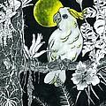 Yellow Moon  by Richard Brooks