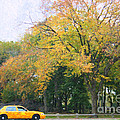 Yellow Nyc Taxi Driving Through Central Park Usa by Liz Leyden