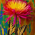 Yellow Red Mum With Yellow Black Butterfly by Garry Gay