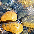 Yellow Rocks At Lake Shore by Mary Bedy