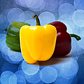 Yellow Sweet Pepper - Square - Textured by Alexander Senin