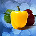 Yellow Sweet Pepper - Textured by Alexander Senin