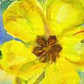 Yellow Tulip by Anna Ruzsan