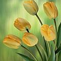 Yellow Tulips by Nina Bradica