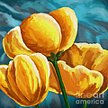 Yellow Tulips On Blue by Tim Gilliland