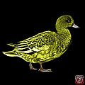 Yellow Wigeon Art - 7415 - Bb by James Ahn