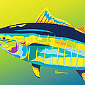 Yellowfin Colors by Kevin Putman