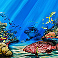 Yellowfin Grouper Wreck by Steve Ozment