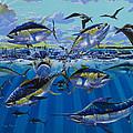 Yellowfin Run Off002 by Carey Chen
