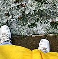 Yellowjacketcomp 2009 by Glenn Bautista