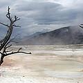 Yellowstone 21 by Ingrid Smith-Johnsen
