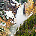 Yellowstone Falls In Spring Time by Jamie Pham