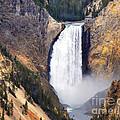 Yellowstone Falls by Robert Kleppin