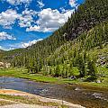 Yellowstone Gibbon River by John M Bailey