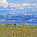 Yellowstone Lake In Yellowstone National Park-wyoming- by Ruth Hager