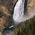 Yellowstone Lower Falls by Bob Phillips